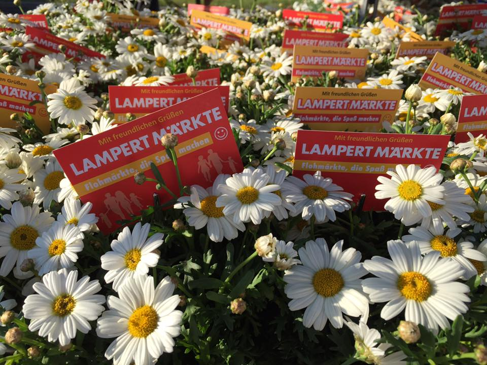 Lampert-Maerkte-Blumengruss